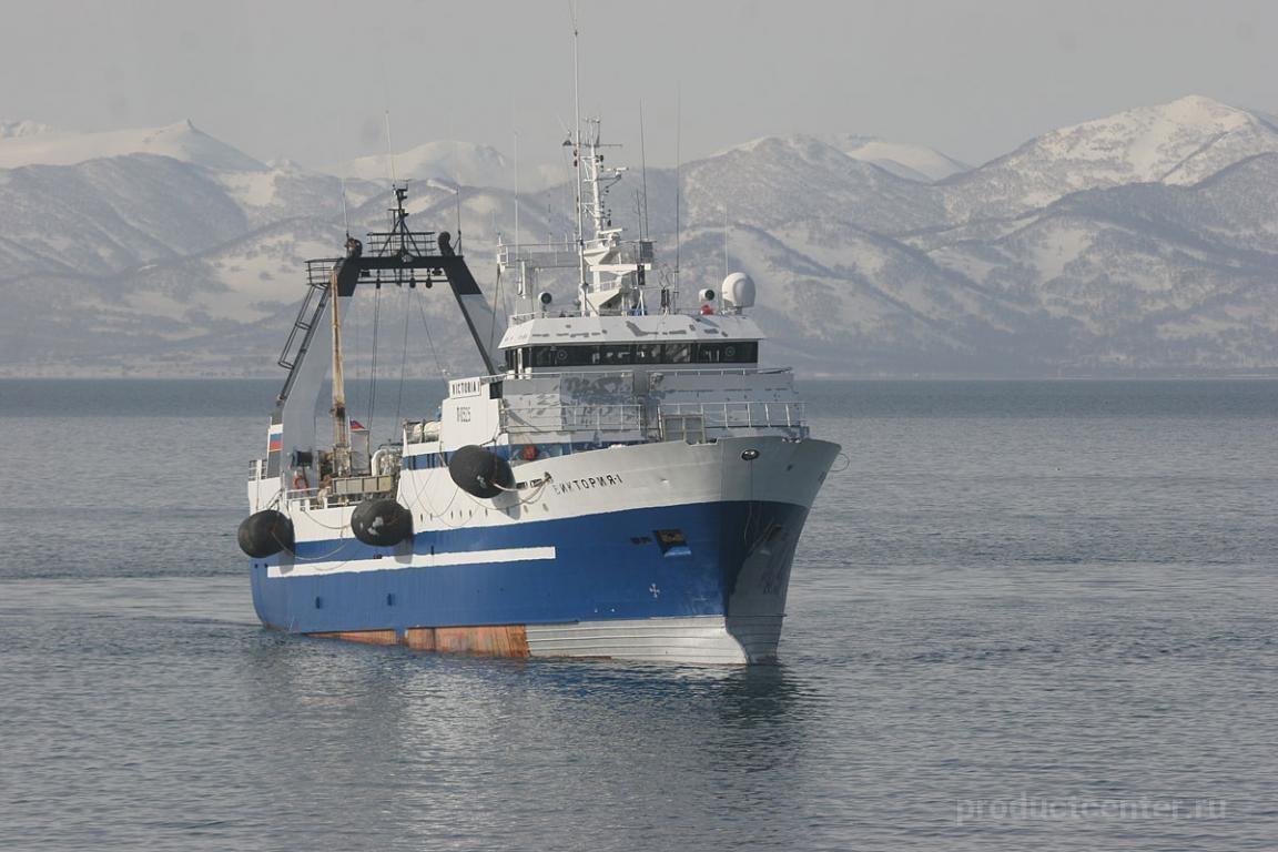 Андромеда рыболовная компания мурманск
