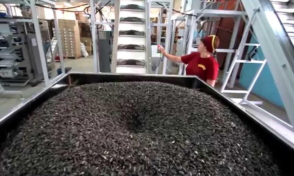 Цех по изготовлению семечек