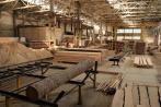 Под Псковом начало работу новое деревообрабатывающее предприятие