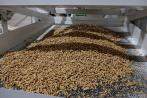 В Красноярском крае запущен новый завод по производству топливных пеллет