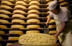 Производство сыра: ассортимент, оборудование и технология изготовления