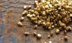 Лицензия на добычу золота