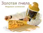 Золотая пчела