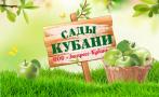 Экспресс-Кубань