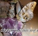 GRANITO-FARFALLA