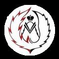 Научно-производственное объединение Феникс