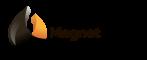 МагнетПатч
