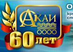 Себряковский комбинат асбестоцементных изделий (СКАИ)