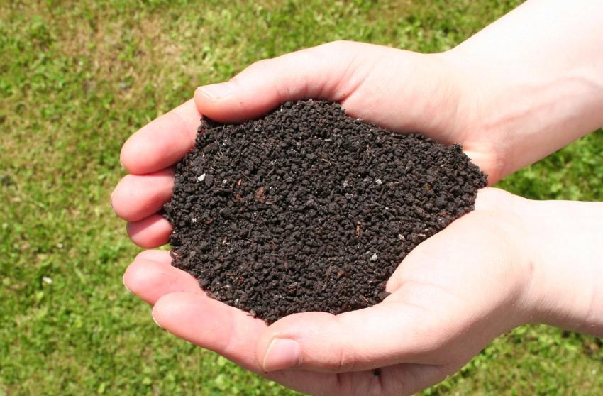 Открытие цеха по производству биогумуса
