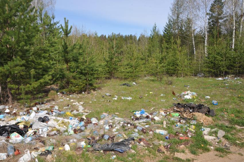 Ученые из Рязани придумали, как дешево переработать мусор: окупается в 6 раз быстрее