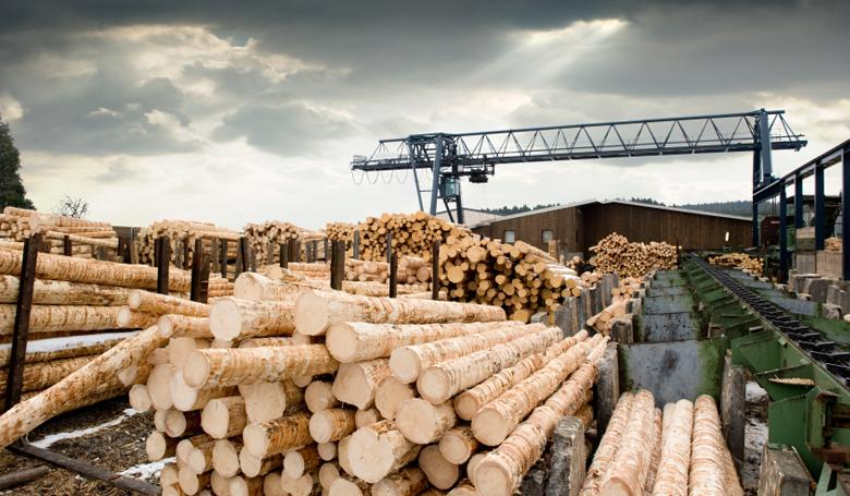 Лесозаготовительная промышленность