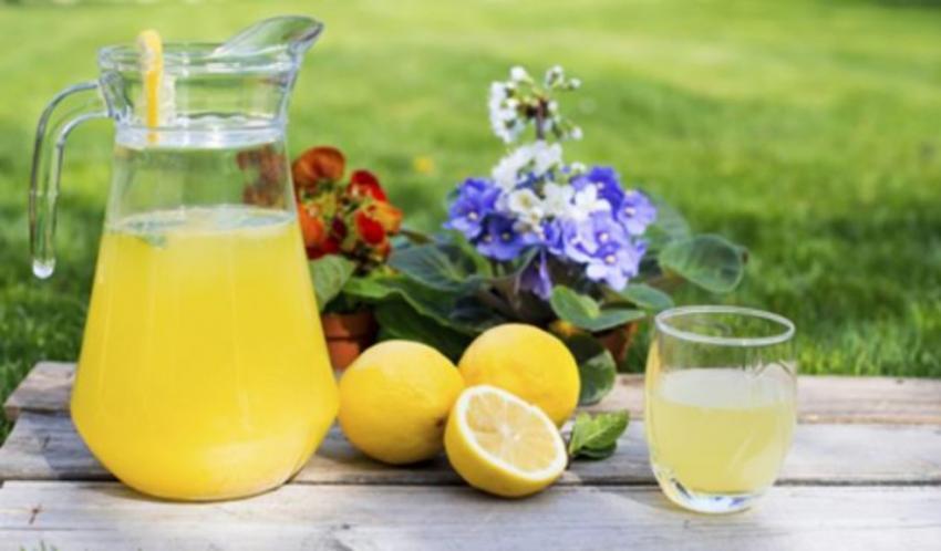 Бизнес на производстве лимонада