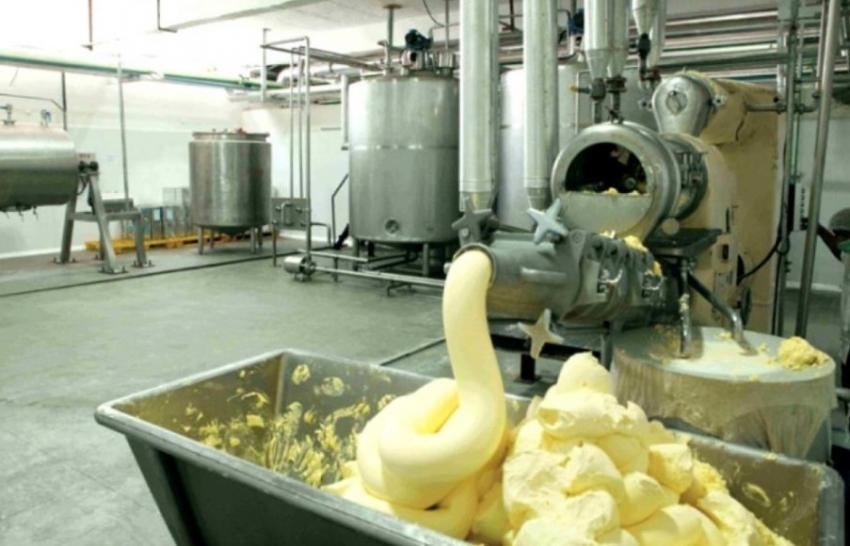 Открытие цеха по производству сливочного масла