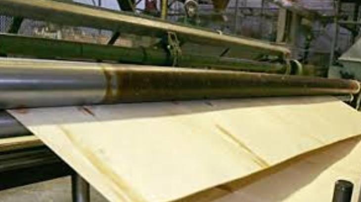 Производство шпона: разновидности, процесс изготовления и оборудование