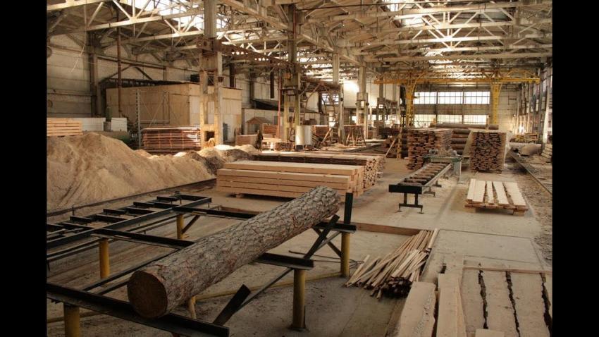 Крупное деревообрабатывающее предприятие приступило к работе в Вологодской области