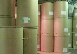Сегежский целлюлозно-бумажный комбинат (Сегежабумпром)