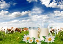 Красноярское молоко