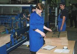 Каменская бумажно-картонная фабрика (КБКФ)