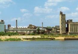 Нижегородский мукомольный завод (Экспонент)