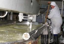 Пучежский сыродельный завод
