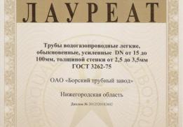Борский трубный завод (БТЗ)