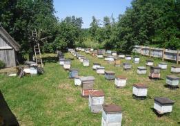 Мед и травы Башкирии