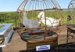 Асяновское