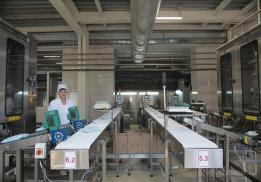 Чебаркульский молочный завод (ЧМЗ)