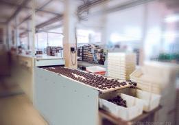 Кизнерская кондитерская фабрика (ККФ)