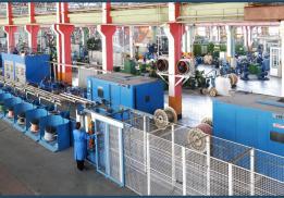 Саранский кабельный завод (Сарансккабель)